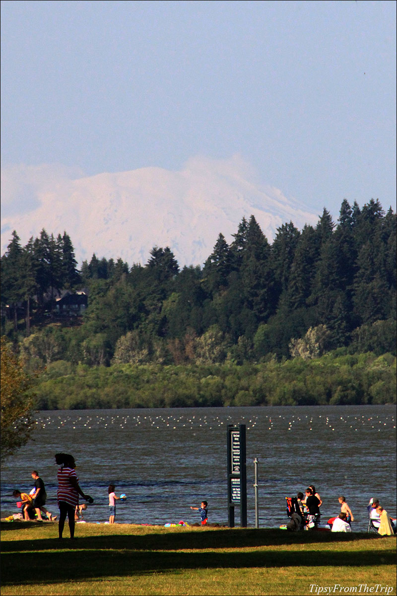 Mt. St. Helens from Vancouver Lake Regional Park, Vancouver, WA
