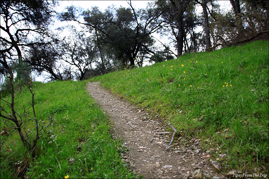 Trail near Folsom Lake, California