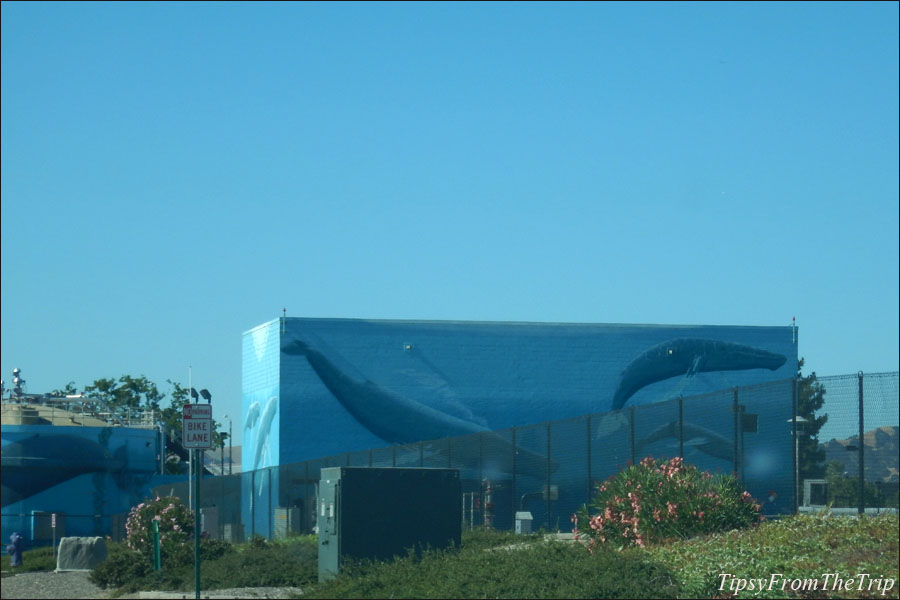 Whale murals on the tanks of Livermore Water Reclamation Plant, California