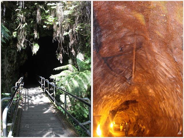Volcano tour:Thurston Lava Tube