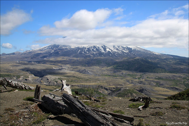 St. Helens: Following the lava path back up to the…