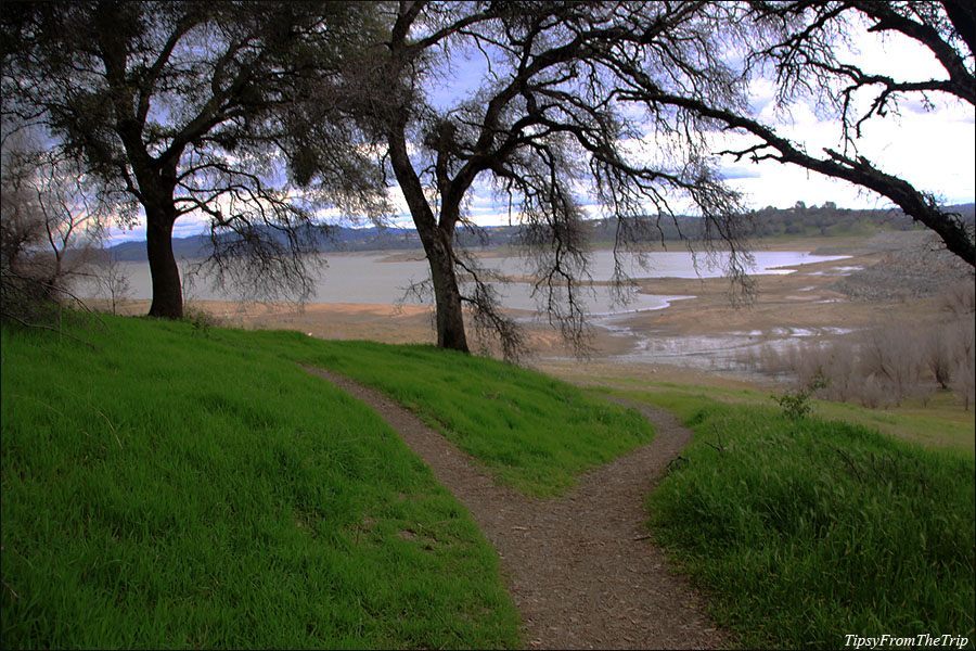 Folsom Lake from one of the trails.