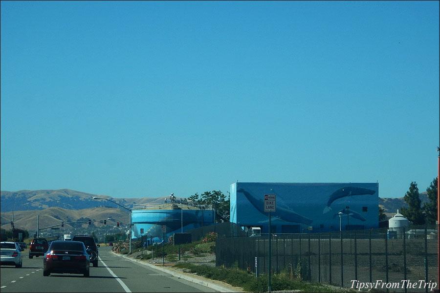 Whale murals, Livermore, California