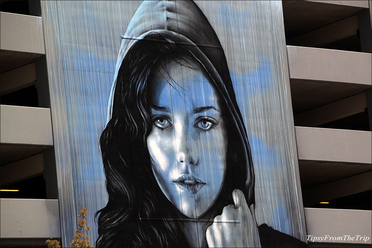 Renos huge parking garage murals tipsy from the trip the face of reno malvernweather Choice Image