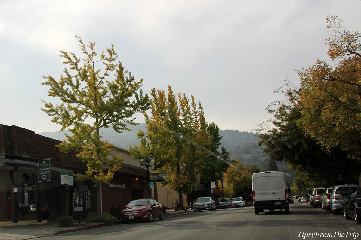 Fall color in Saratoga Village, CA