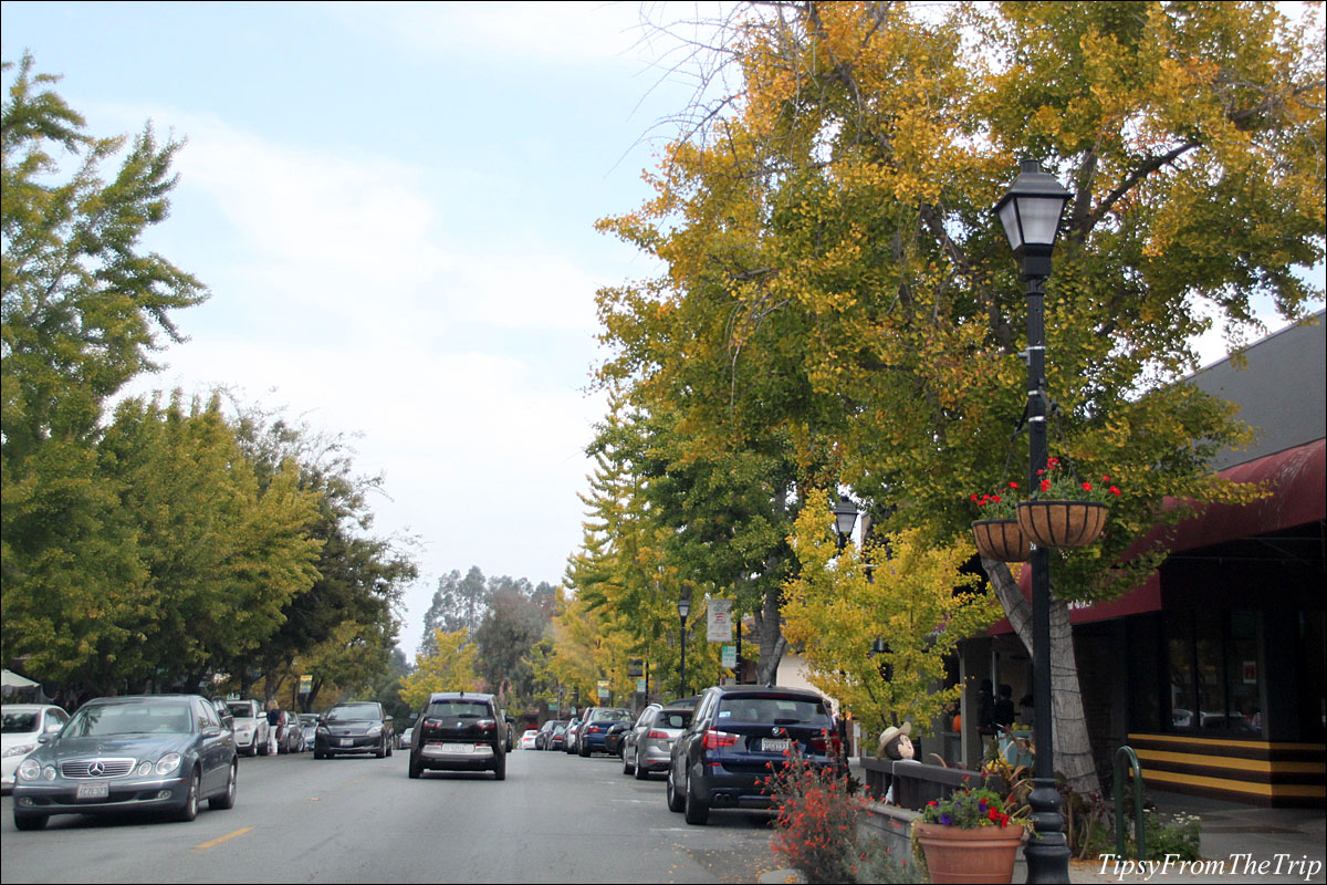 Saratoga Village in all its fall colors