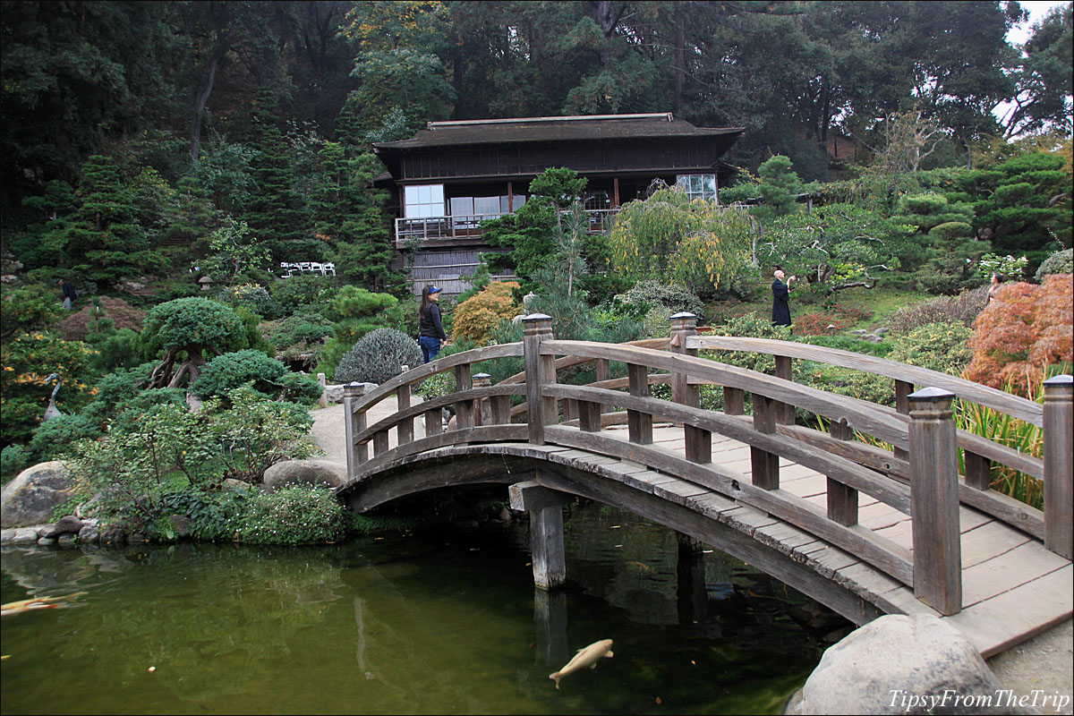 Hakone Gardens, Saratoga - California