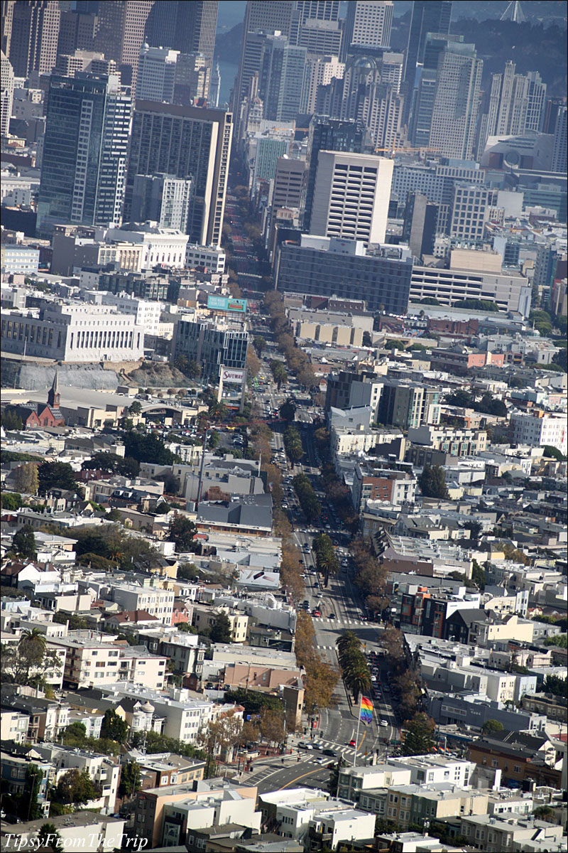 San Francisco from Christmas Tree Point