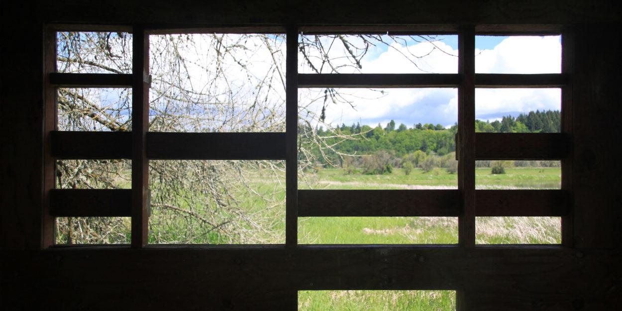 The bird blind at Ridgefield National Wildlife Refuge, WA