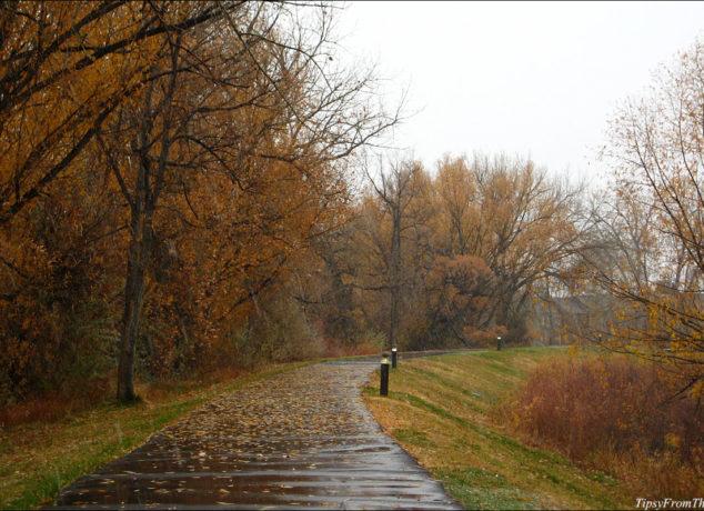 Windsor Lake, Denver in fall